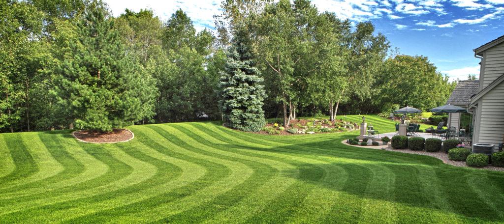 lawn_stripes_2
